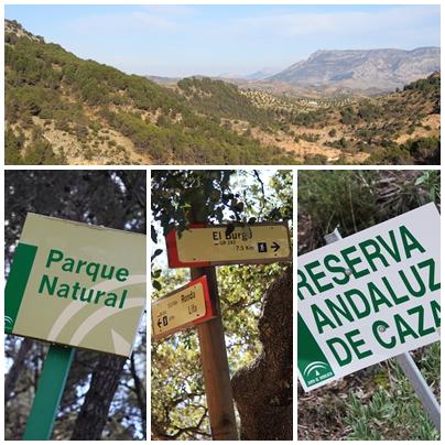 Sierra_de_las_nieves_natural_park